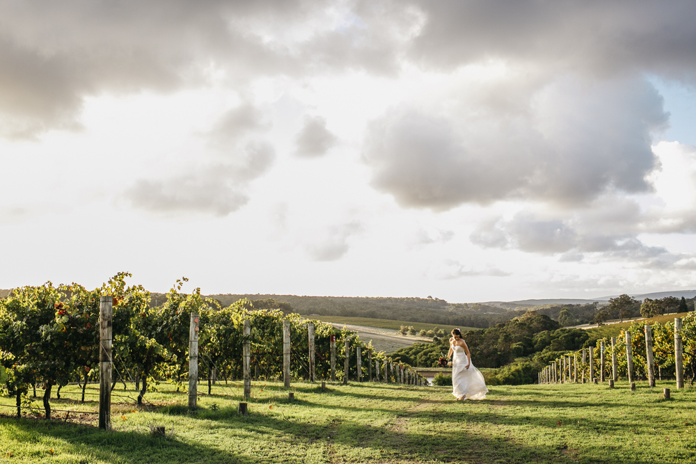 bride at wills domain vineyard