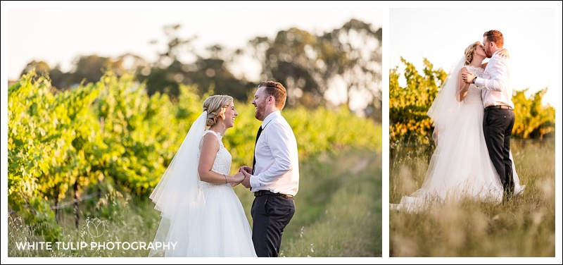 portraits in the vines swan valley