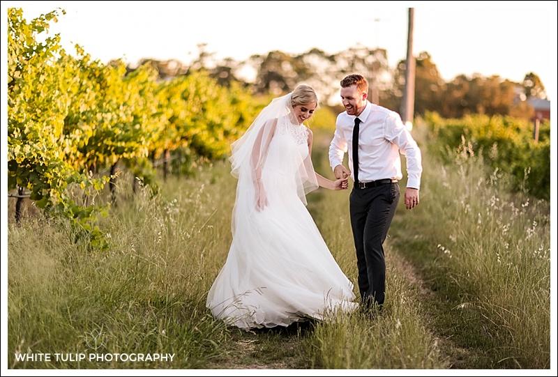 portraits in vineyard bride and groom