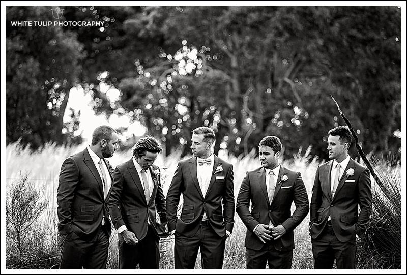 wise-wines-wedding-dunsborough-australia_0039.jpg