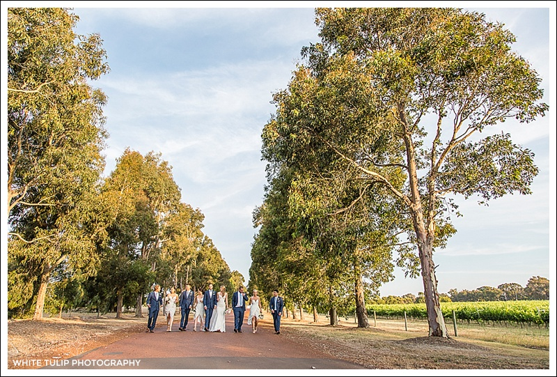 wise-wines-wedding-dunsborough-australia_0042.jpg