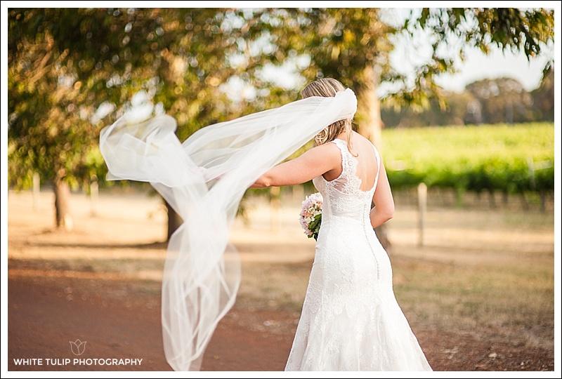 wise-wines-wedding-dunsborough-australia_0046.jpg