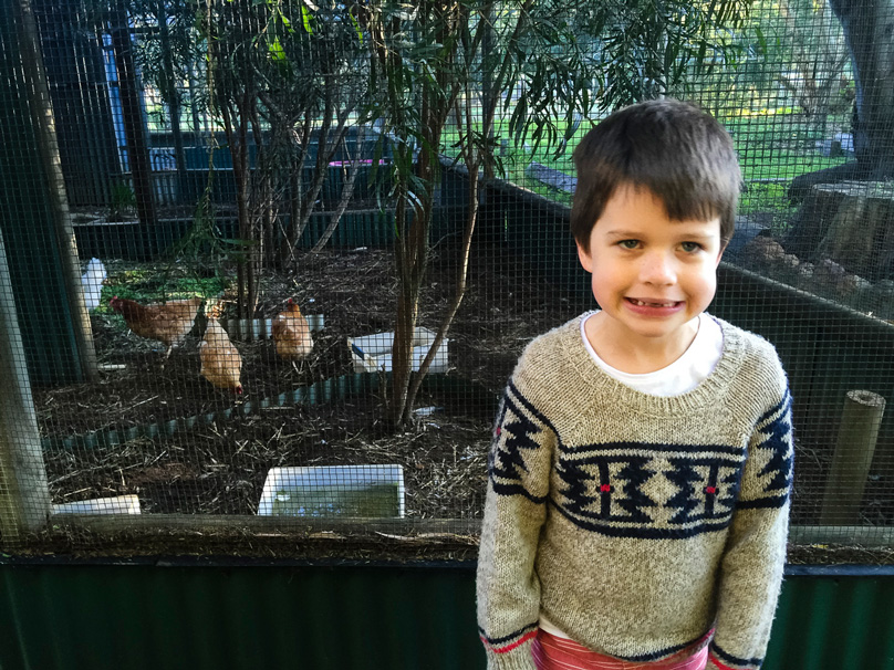 charlie-and-the-chickens