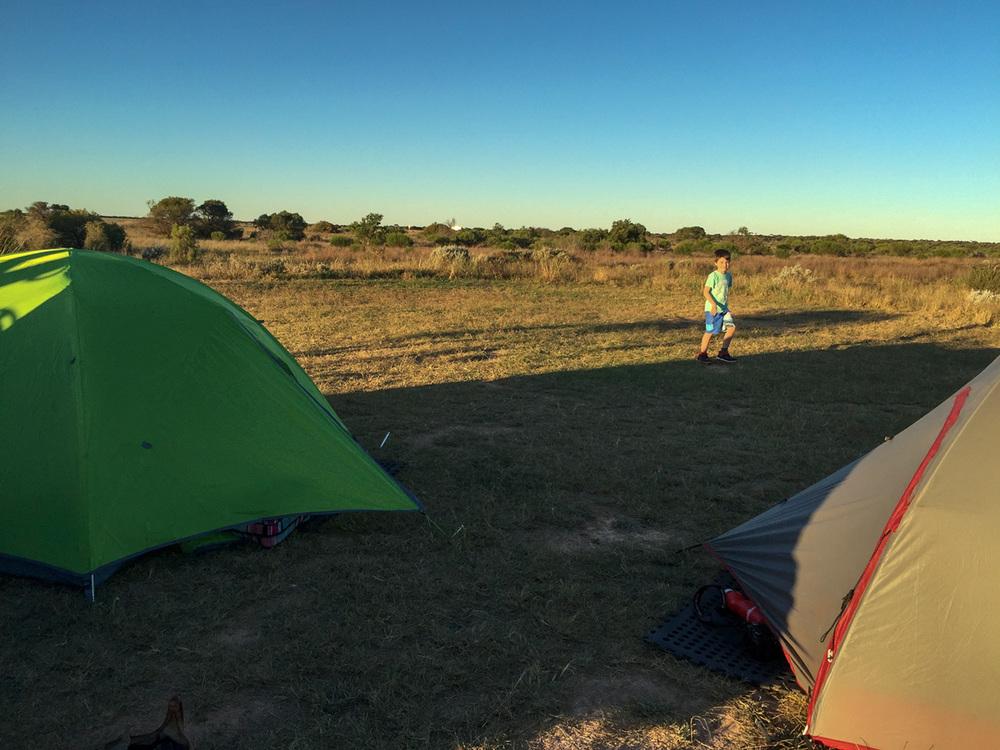 cocklebiddy-tents