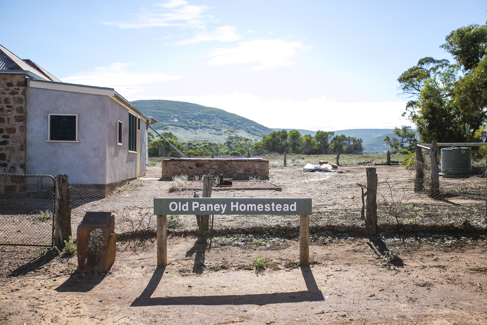 old-paney-homestead