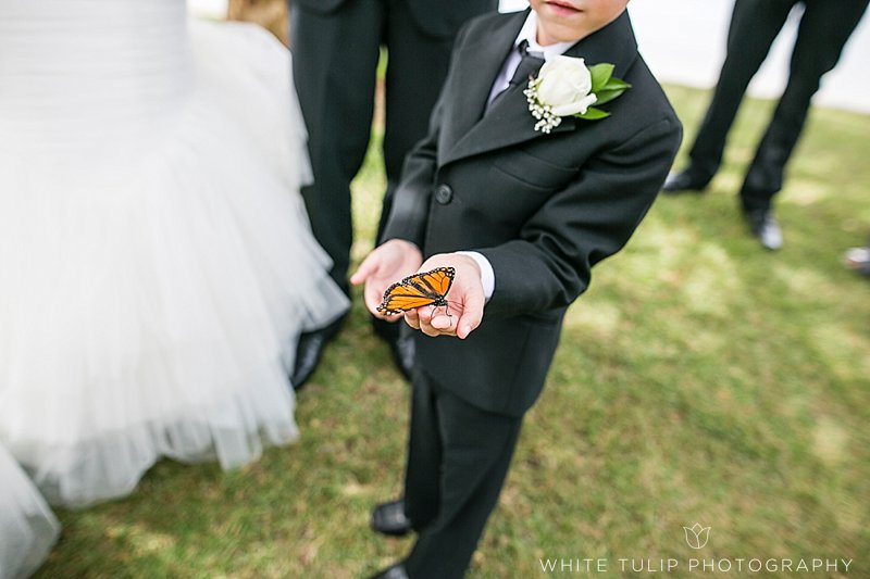 butterfly release wedding
