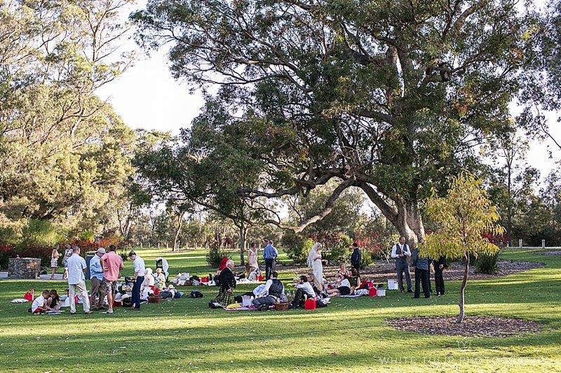 kings-park-relaxed-picnic-wedding_0086.jpg