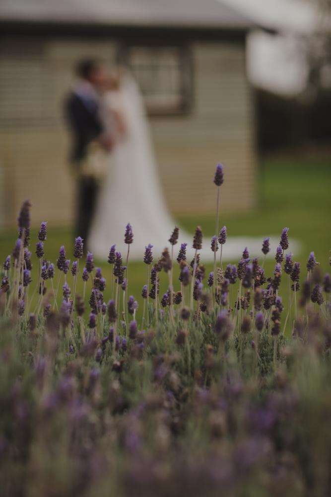 broadwater-farm-wedding-photographer-busselton-58.jpg