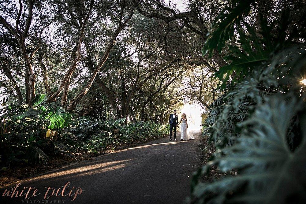 serbian-wedding-perth-photographer-caversham-house_0088.jpg