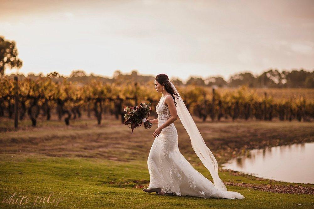 perth-wedding-photographers-mandoon-estate-swan-valley_0109.jpg