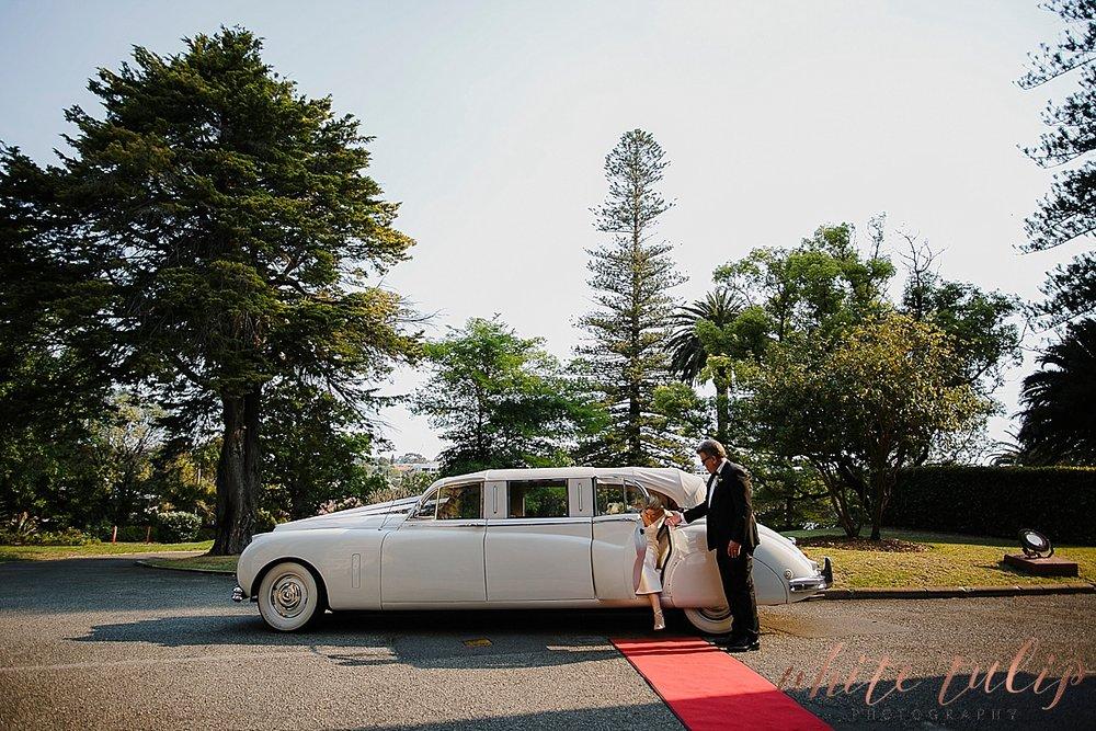 frasers-wedding-photographer-kings-park_0020.jpg