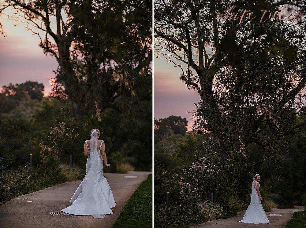 frasers-wedding-photographer-kings-park_0067.jpg