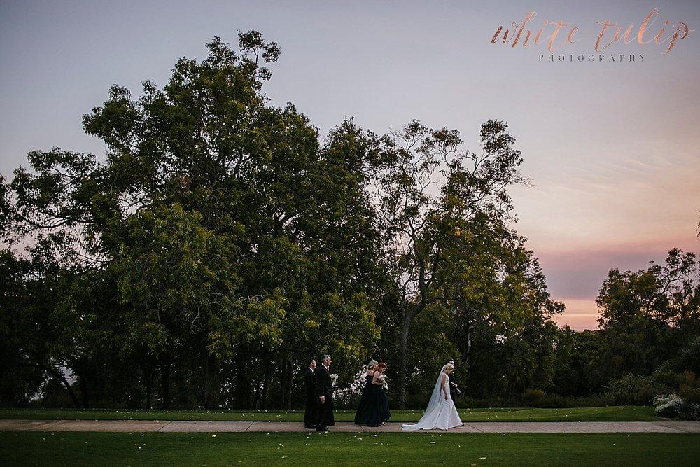 frasers-wedding-photographer-kings-park_0072.jpg