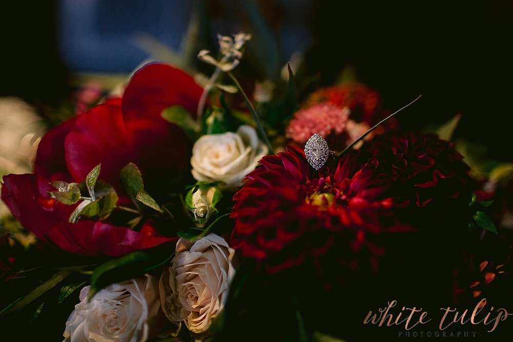 frasers-wedding-photographer-kings-park_0110.jpg