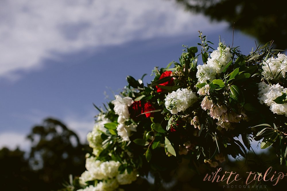 frasers-wedding-photographer-kings-park_0133.jpg
