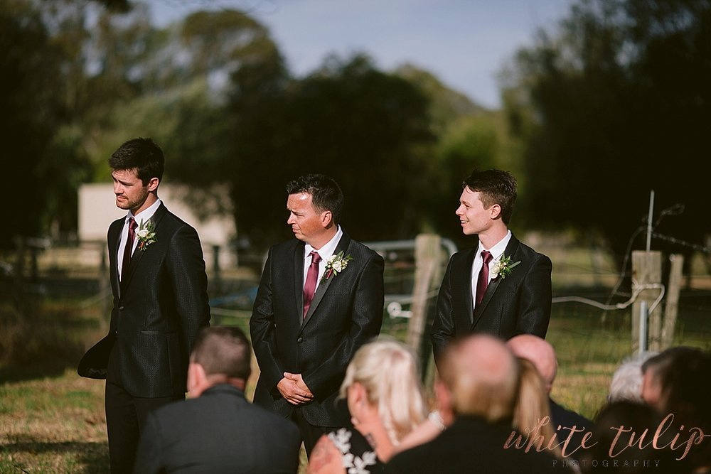 frasers-wedding-photographer-kings-park_0140.jpg