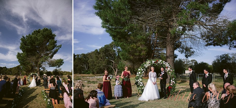 frasers-wedding-photographer-kings-park_0141.jpg