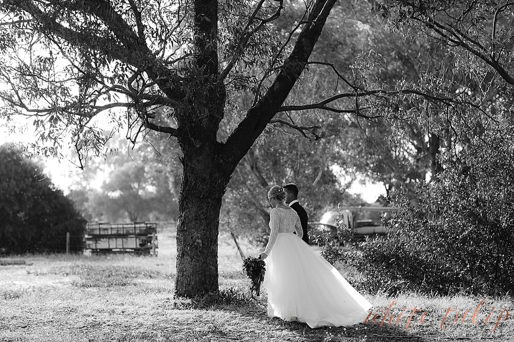 frasers-wedding-photographer-kings-park_0155.jpg