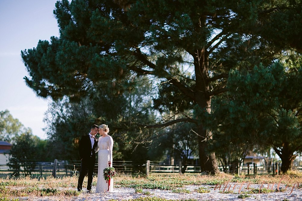 frasers-wedding-photographer-kings-park_0168.jpg