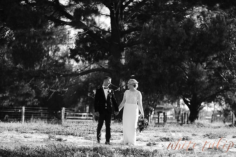 frasers-wedding-photographer-kings-park_0169.jpg