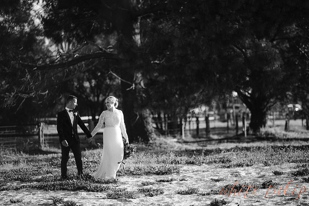 frasers-wedding-photographer-kings-park_0172.jpg