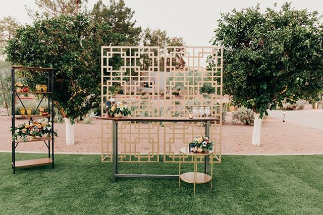 """These are a few of my favorite things...."" ⠀⠀⠀⠀⠀⠀⠀⠀⠀ Planners: @krysta.slic @steph.slic @somelikeitclassic Venue: @andazscottsdale Floral: @mintgreendesign  Fashion: @bellalilybridal @celebtuxntails Hair/Makeup and Models:@blendidskincare  Photography: @meganclairephoto  Furniture: @primrentals @dang.finerentals Rentals: @materialgirlsweddings @brighteventrentals  Linens: @latavolalinen"