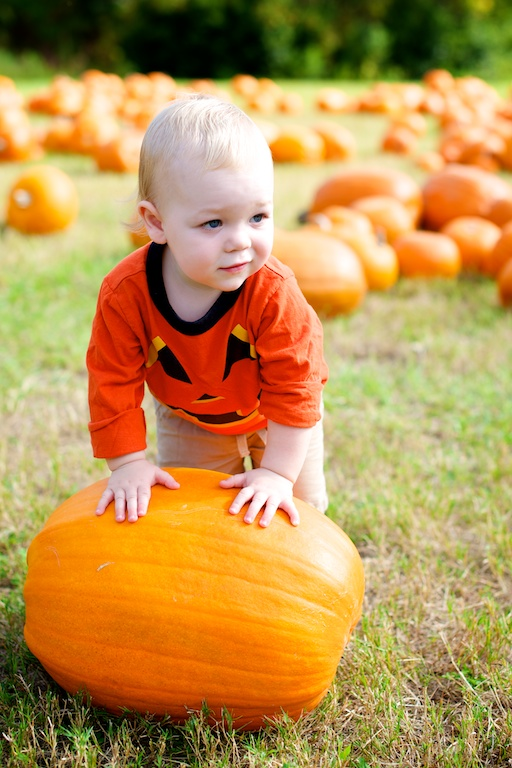 Jacksonville Beach Family Photographer – Pumpkins.jpg