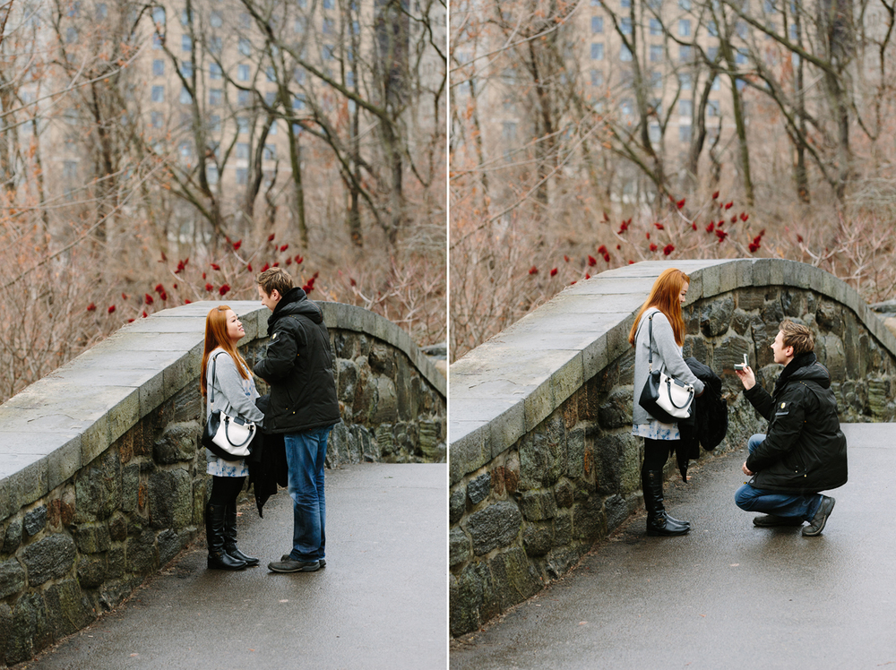 central-park-proposal-photographer.jpg