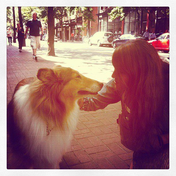 nathalie and lassie.jpg