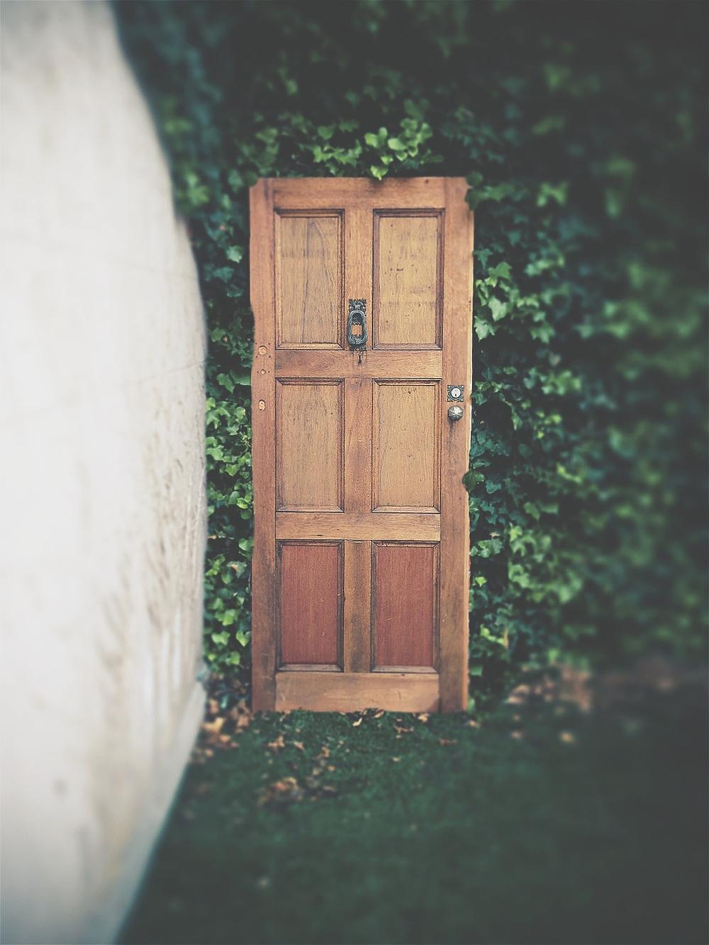 Door final.jpg