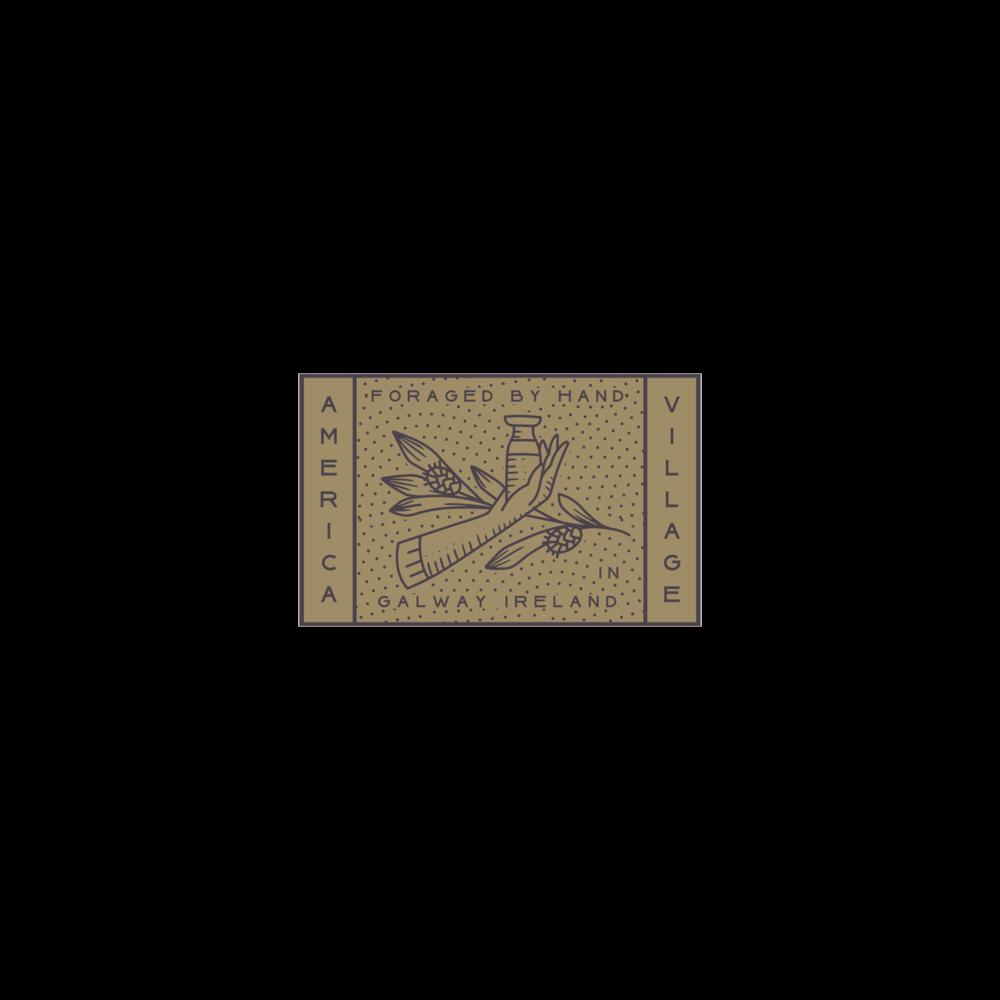 AVA_Logo_Digital_141 Transparent.png