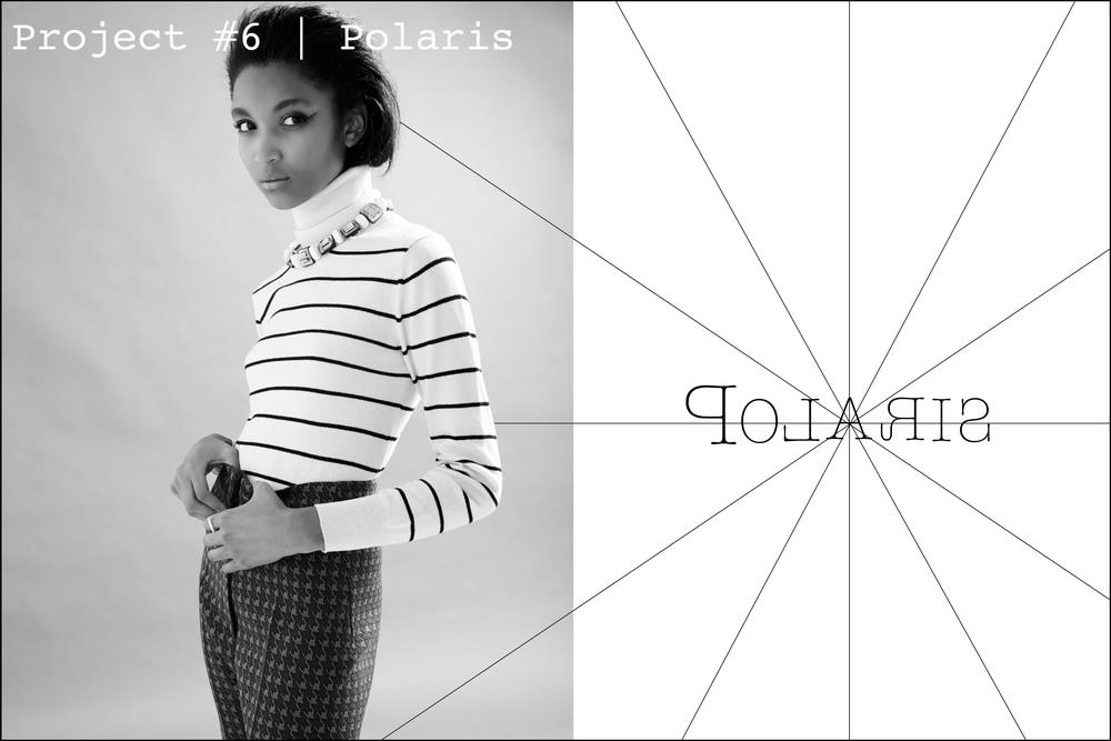 POLARIS 6 POLARIS.jpg