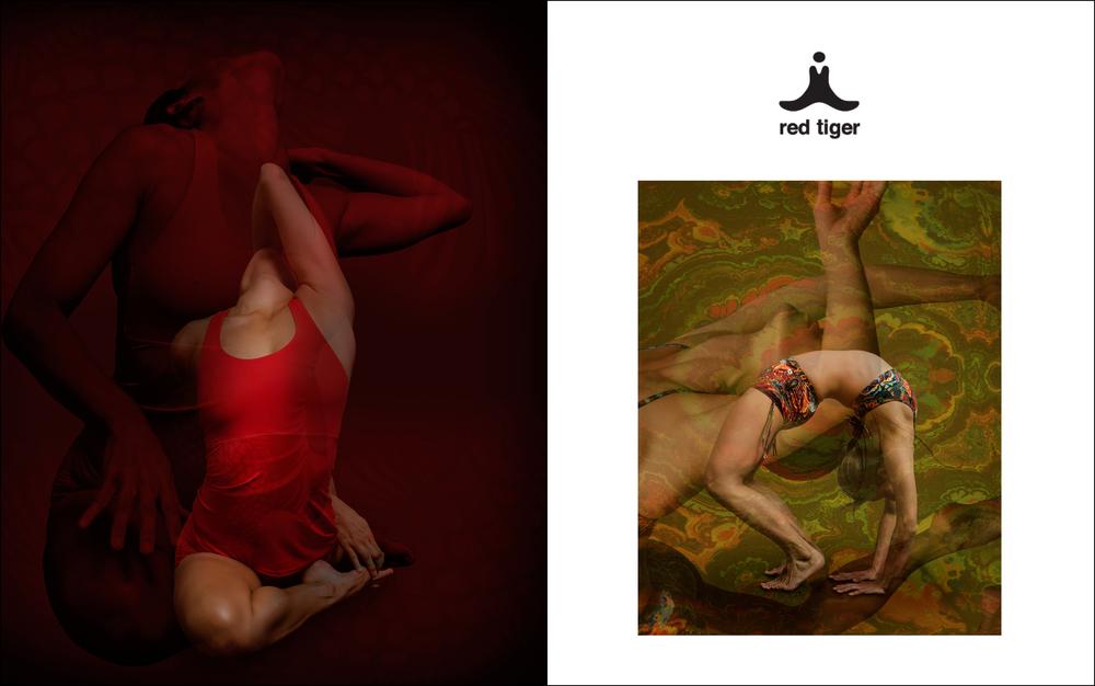 RED TIGER AUSTRALIA RIJI SUH 4.jpg