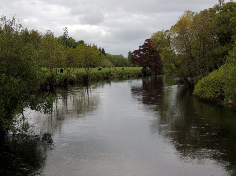 70 River Suir near Swiss Cottage (1024x766).jpg