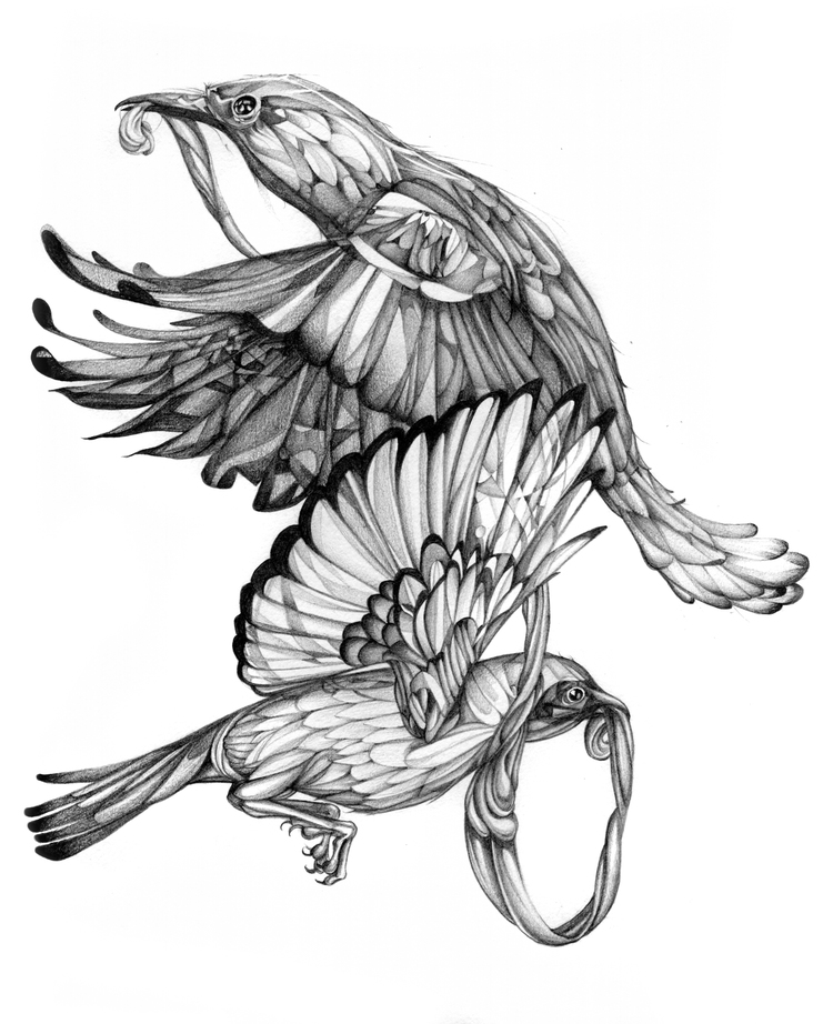 Birdzscanclean.jpg