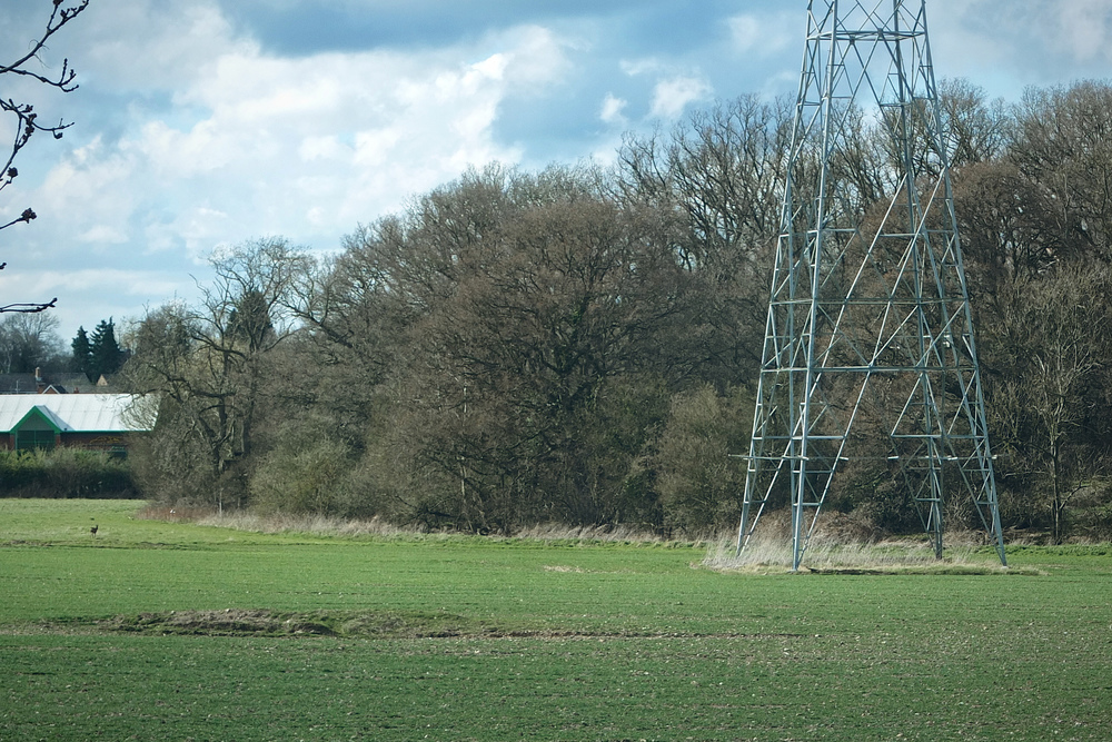 Pylon in a field in Surrey