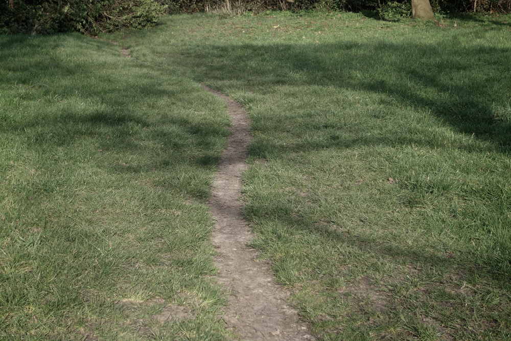 Kinked path