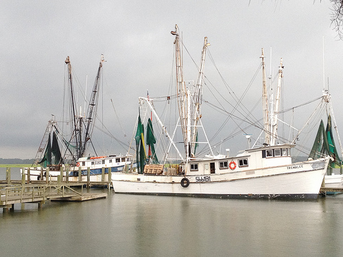 photo 6 - Port Royal Shrimp Boats.jpg