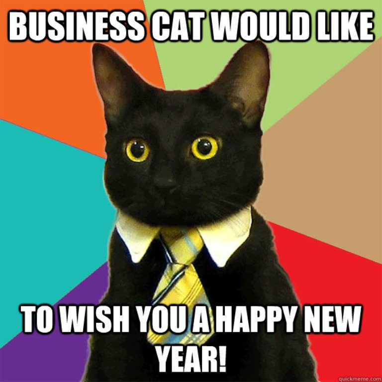 Happy-New-Year-Meme-Cat.jpg