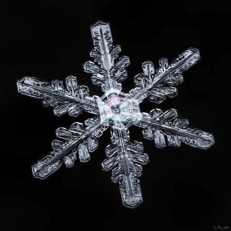 The Snowflake Guy Don Komarechka will be presenting and discussing his amazing photos like this.
