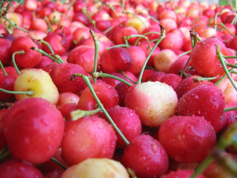 Cherries close up.jpg