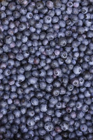 Blueberries-.jpg