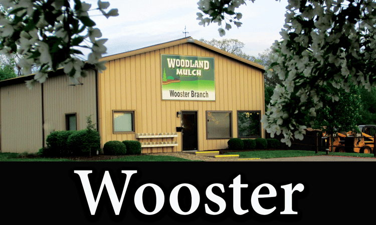 Wooster Branch Office