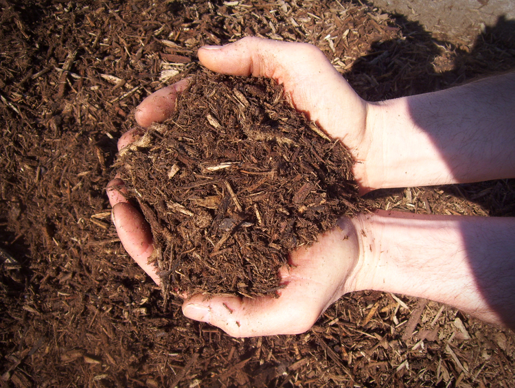 double ground wood mulch woodland mulch