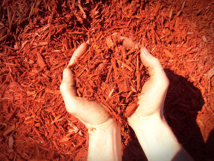 bright red mulch Strausburg Ohio