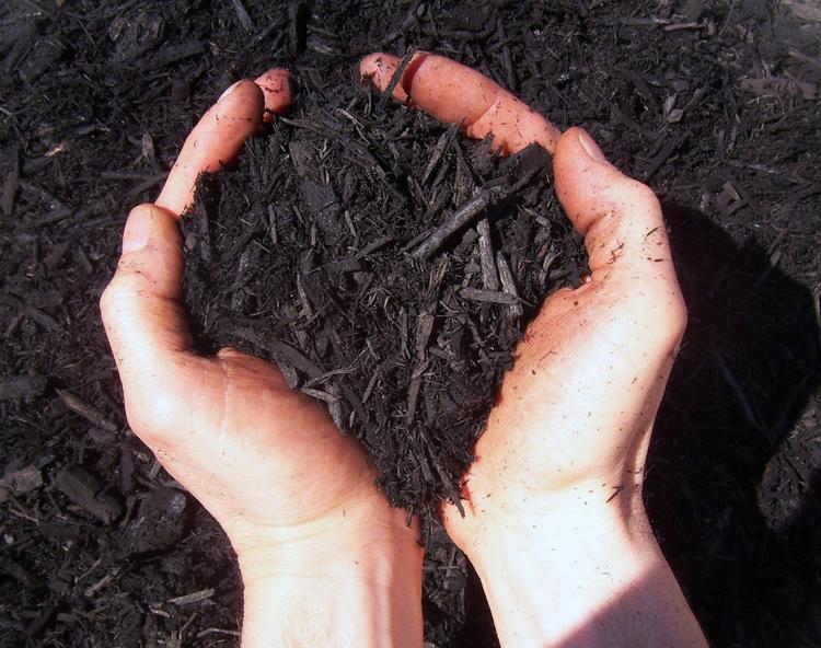 black landscaping mulch Akron Ohio