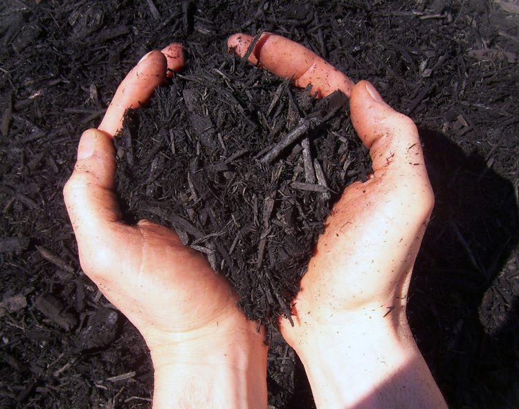 black dyed wood mulch kidron Ohio