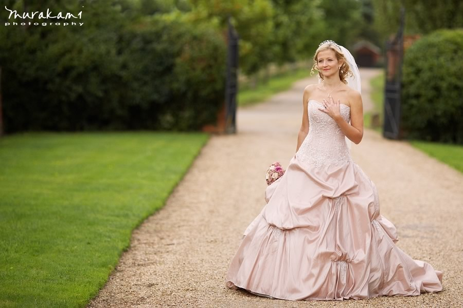 cd_pink_wedding_dress_bridal_portrait.jpg