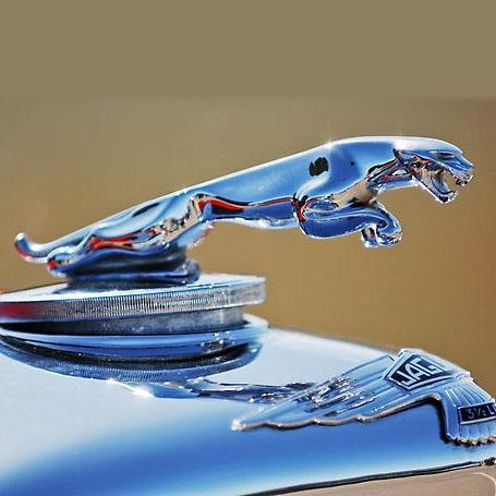 Jaguar E.jpg
