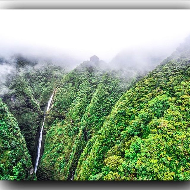 Another beautiful Sunday in Hawaii Nei 📸 @ryan2888 #happyfishhawaii #beach #hawaii #mountains #waterfall #beautiful #oahu #waikiki #808 #oahuhawaii #travel #adventure #luckywelivehawaii